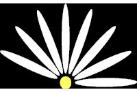 Daisy-i Logo